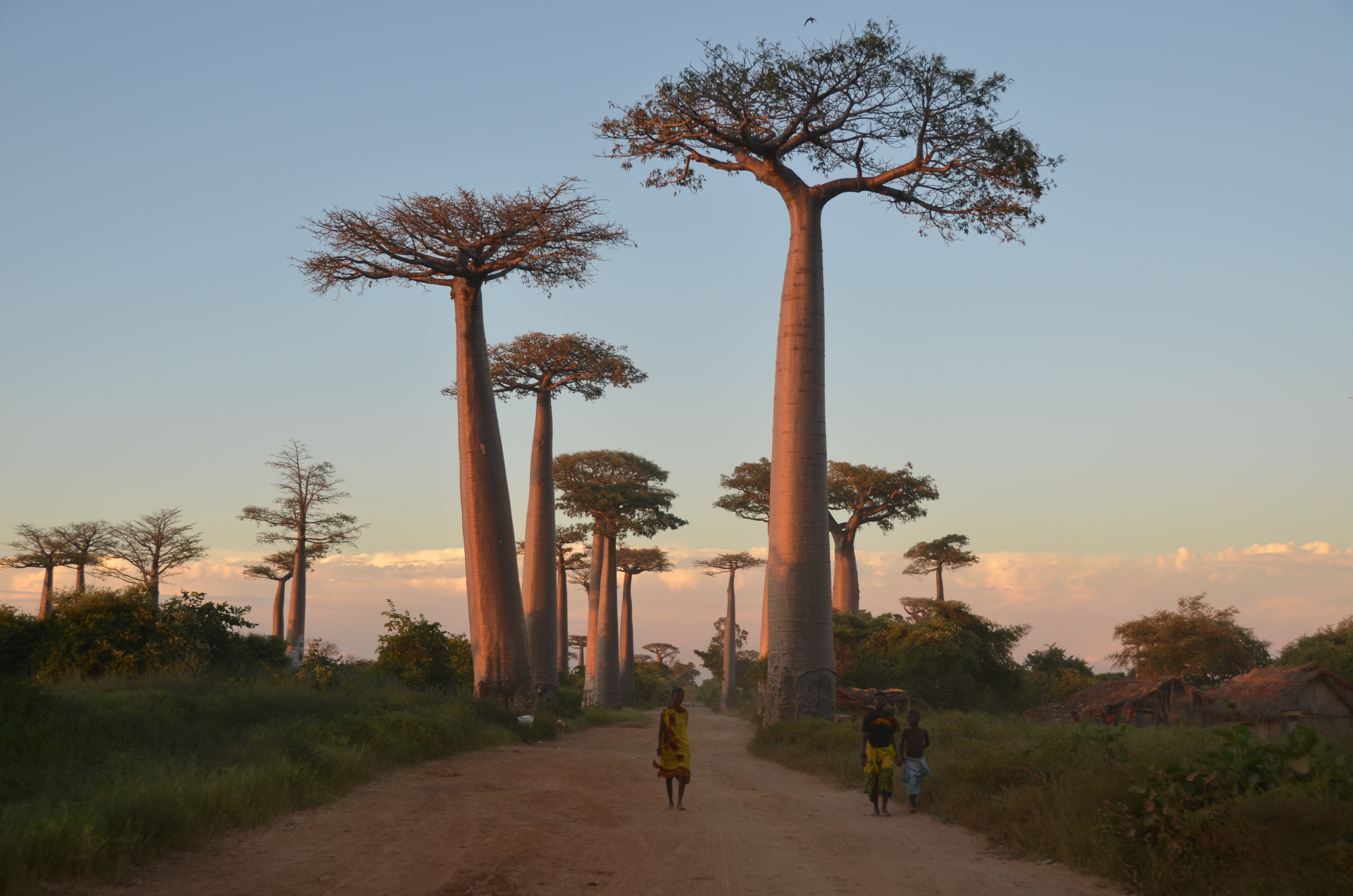 Madagascar: A Gemologist's Journey